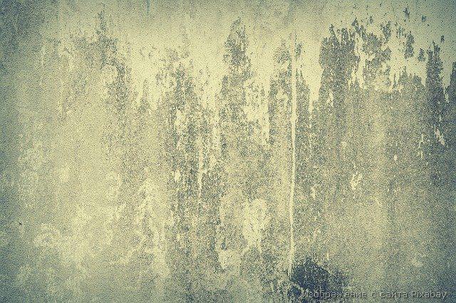 старая стена фото