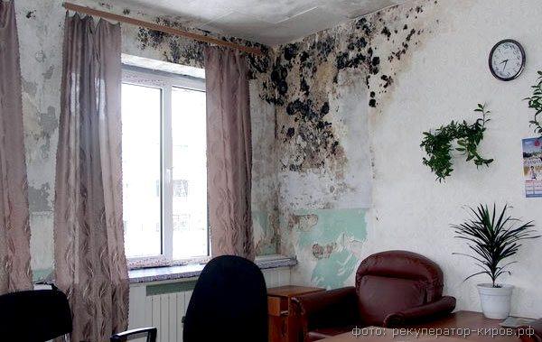 промерзание стен фото